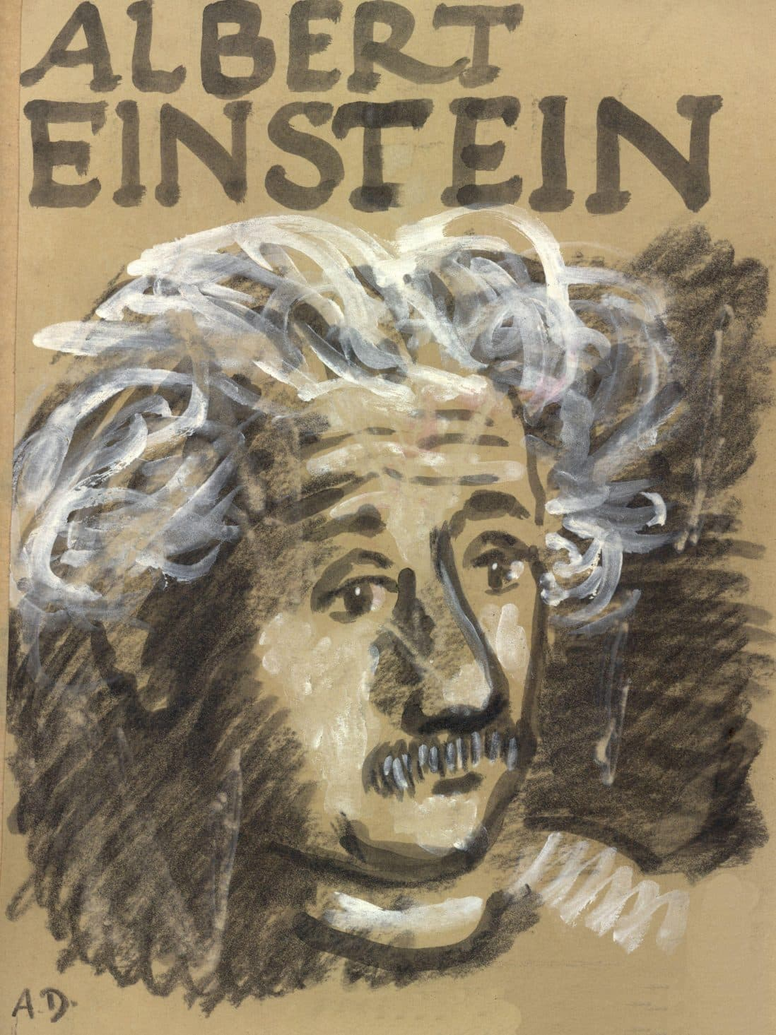 Essay On Science Albert Einstein Radical A Political Profile Essay On Terrorism In English also English Essays On Different Topics Monthly Review  Albert Einstein Radical A Political Profile What Is Thesis Statement In Essay