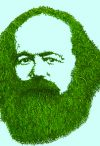 Ecosocialism