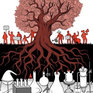 Image by Matteo Farinella, for Science for the People